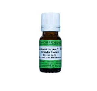 Dactylopius-coccus-C-1000-Globuli