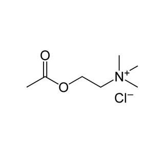 Acetylcholinum-chloratum-Globuli