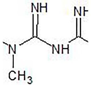 Metformin-Globuli