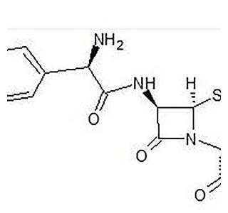 Amoxicillin-Globuli