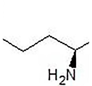 L-glutamin-Globuli
