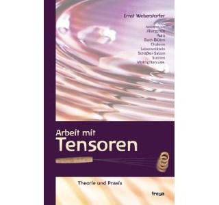 Arbeit mit Tensoren von Ernst Weberstorfer