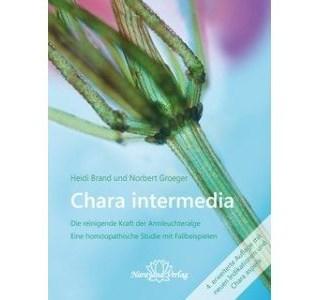 Chara intermedia von Heidi Brand und Norbert Groeger