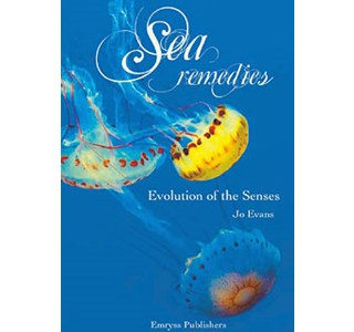 sea-remedies-jo-evans.jpg